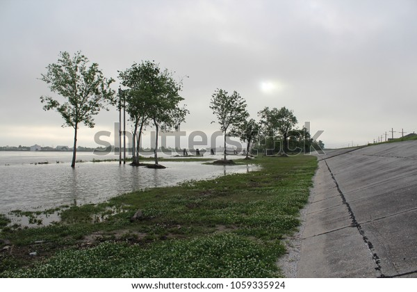 Trees peak out of the mist as flood waters rise against the levees in New Orleans, Louisiana