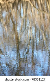 Trees reflect off the surface of the Kishwaukee River in northern Illinois