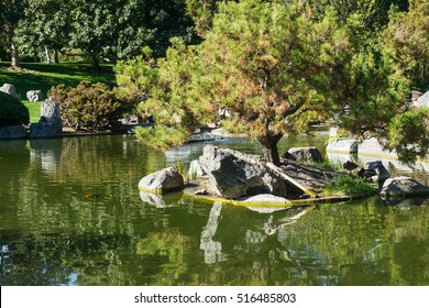 Trees reflected in a man made pond, California
