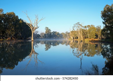 Trees reflected on Wimmera River in Horsham Australia,
