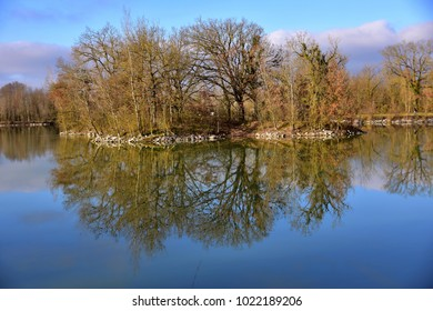 Trees reflected in a placid lake
