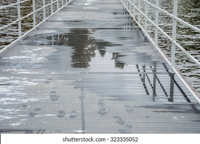 trees reflected in a puddle on the pier