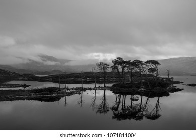 Trees reflected in the still waters of a Scottish Loch, with low clouds surrounding the mountains