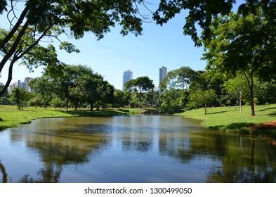 Trees reflecting upon a lake in Goiania, Goias, Brazil