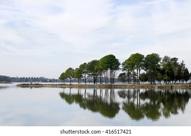 Trees reflecting in the water at a bay.