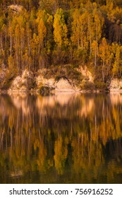 Trees reflection in lake