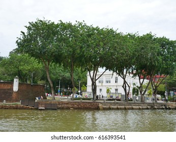 Trees and rivers in Malacca Town