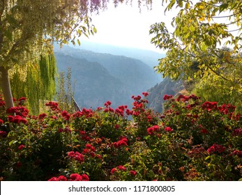 Trees and roses on a background of mountains. View from Bsharri garden Bsharri, The Beqaa Valley, Lebanon.