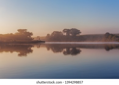 Trees silhouettes and early morning fog over river at sunrise with copy space