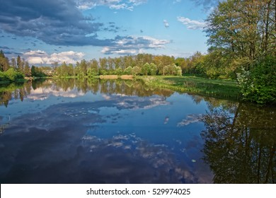 Trees and sky mirrored in a pond at Bialowieza National Park as a part of Belovezhskaya Pushcha National Park in Poland.
