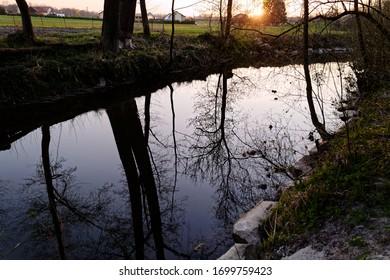 Bäume an einem kleinen Fluss in Österreich