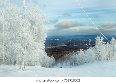 Trees in snow, Ural, Russia
