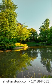 """Trees and their reflection in lake of """"Parc de l'Orangerie"""" in Strasbourg, France"""