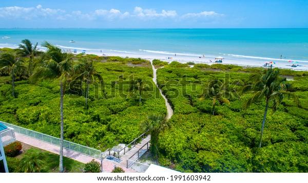 trees-vegetation-path-going-down-600w-19