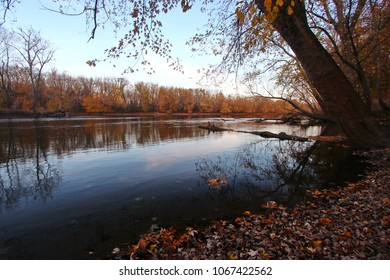 Trees in the woods in Autumn or fall season with a river or creek passing through the woods.