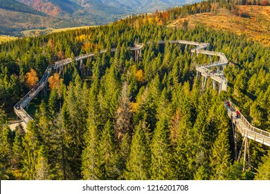 The treetop walk Bachledka in High Tatra mountains, Bachledova Valley in Slovakia