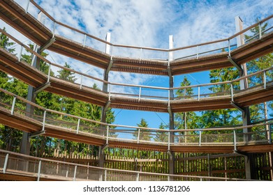 Tree-top walk in Prora on the island of Rügen at the Baltic Sea