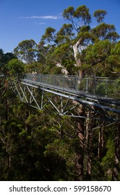Treetop Walk at Valley of the Giants in Denmark, Western Australia.
