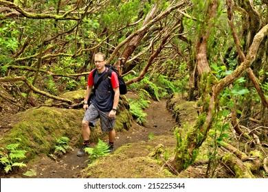 Trek in wild forest in Anaga mountains, Tenerife