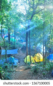 treking camping and nature in Forest in north of Thailand