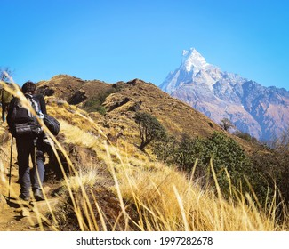 Trekker trekking on the sloppy route to Mardi himal (Mountain) on the bright summer day; Mardi himal also called Machhapuchre (meaning fish like tail).