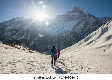Trekker walking on the snowfield with Machhapuchhre mountain (Mt.Fish tail) the holy mountains in the background. On the way back from Annapurna base camp, Nepal.