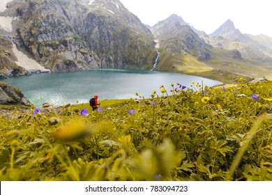 A trekker walks past Gadsar lake and a meadow full of flowers at kashmir great lakes trek in Sonamarg, Jammu and kashmir, India. Beautiful Himalayan mountains, turquoise glacial lakes, wallpaper