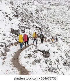 Trekkers going to Everest Base Camp in snowstorm - Nepal, Himalayas