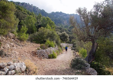 Trekking along Serra de Tramuntana,mountain range on the western side of Majorca on a beautiful summer day