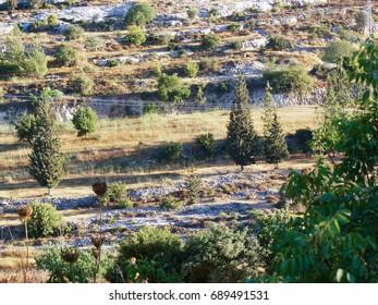 Trekking around the countryside of Jerusalem part of The National Trek