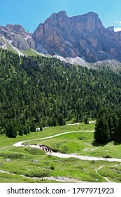 Trekking in the Dolomites, UNESCO heritage, near the Rifugio Firenze, above Val Gardena in Italy