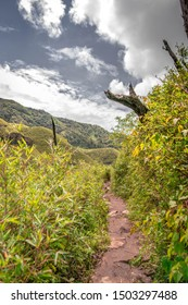 Trekking to Dzukou Valley. A beautiful valley of flowers in Northeast India.