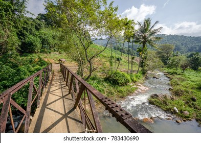 Trekking - Footbridge 2, Knuckles Range Mountains, Sri Lanka, December 2017