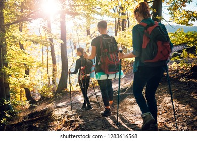 Trekking in forest, group of friends with backpacks