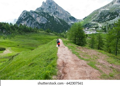 Trekking in the high mountains
