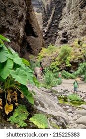 Trekking in Masca gorge, Tenerife