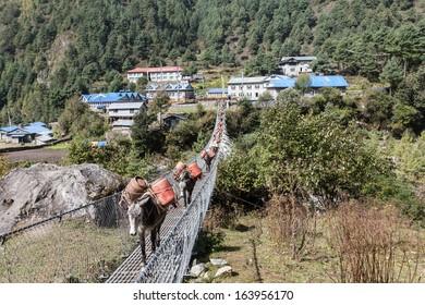 Trekking from Namche Bazaar to Monzo Nepal Sagamatha National Park