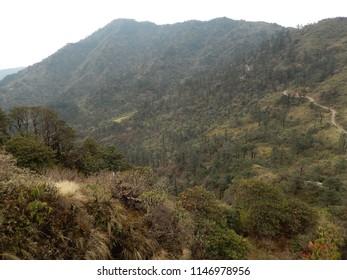 Trekking In Sandakphu, Singalila National Park.
