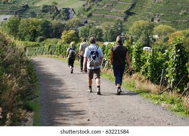 Trekking through the vineyards near Mayschoss