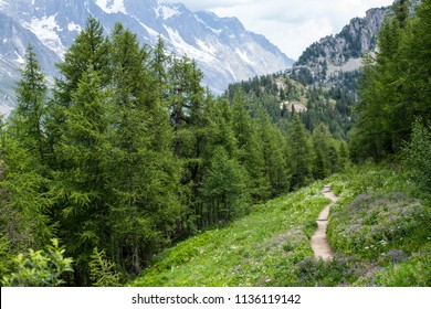 A trekking trail of the Tour du Mont Blanc trail (TMB) at Col Checrouit with a view on the South side of the Mont Blanc massif in summertime
