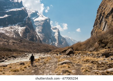 a trekking woman alone on the mountain route in Annapurna circuit, Nepal