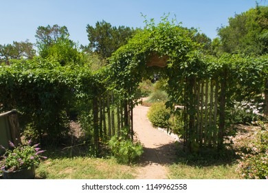 trellis and a gate are one of the entrances to a butterfly garden