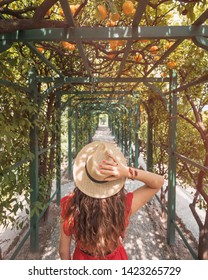 Tremezzina, Italy - June 24, 2017: A girl with a straw hat in a tunnel with oranges at Villa Carlotta on Lake Como