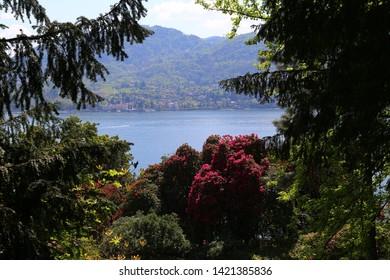 Tremezzo, Italy - April, 20, 2019: View of the garden of Villa Carlotta