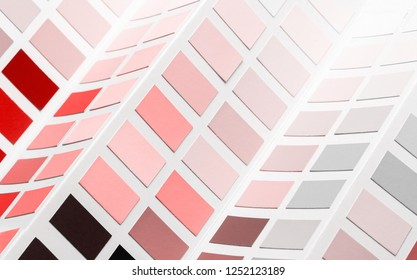 Trend photography on the theme of the new color of the year 2019 - Living Coral. samples palette catalog