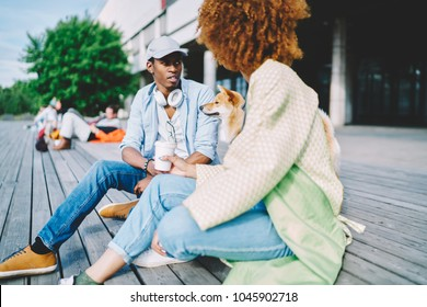 Trendily dressed hipster friends spending coffee break together walking akita inu dog on city street,dark skinned guy resting with curly hair girlfriend and pet on weekend talking sitting on square