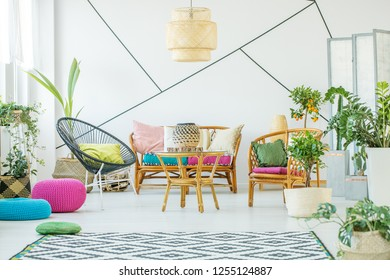 Trendy black armchair with pillow, urban jungle and patterned carpet in fashionable living room interior with rattan sofa, armchairs and coffee table