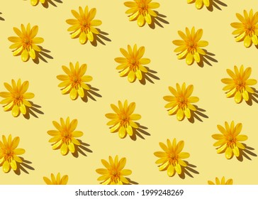 Trendy hard shadow sun light yellow dandelion or chamomile daisy flower on a pastel background. Isometric hot summer or fall seamless pattern wallpaper design. Minimal warm playful funky 90's concept.