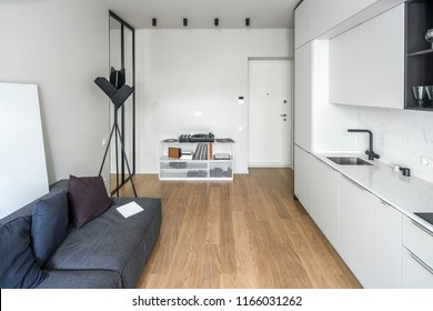 Trendy kitchen in a modern style with light walls and a parquet on the floor. There are white lockers and drawers, sink, gray sofa with pillows, black floor lamp, stand with a vinyl player, mirror.