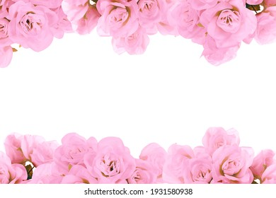 trendy pink rose spring flower border with room for text